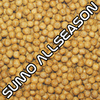 Sumo AllSeason, 6mm, 15kg Kombi Box